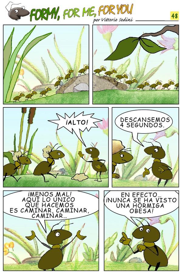 FORMY 48 spagnolo 600 rid