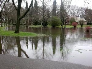 150808 OHiggins Inondazione Polo 04 rid