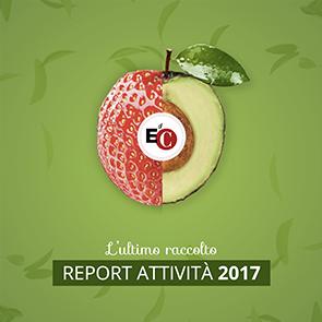 Rapporto Edc 2017