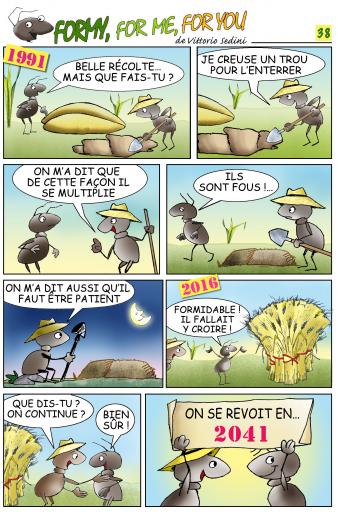 FORMY 38 francese