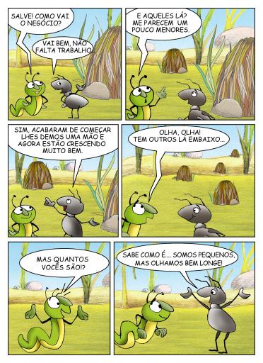 FORMY 41 portoghese
